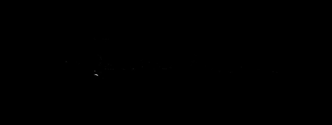 tbfashionViCtim_signature-003_ohne neu gepixelt_2