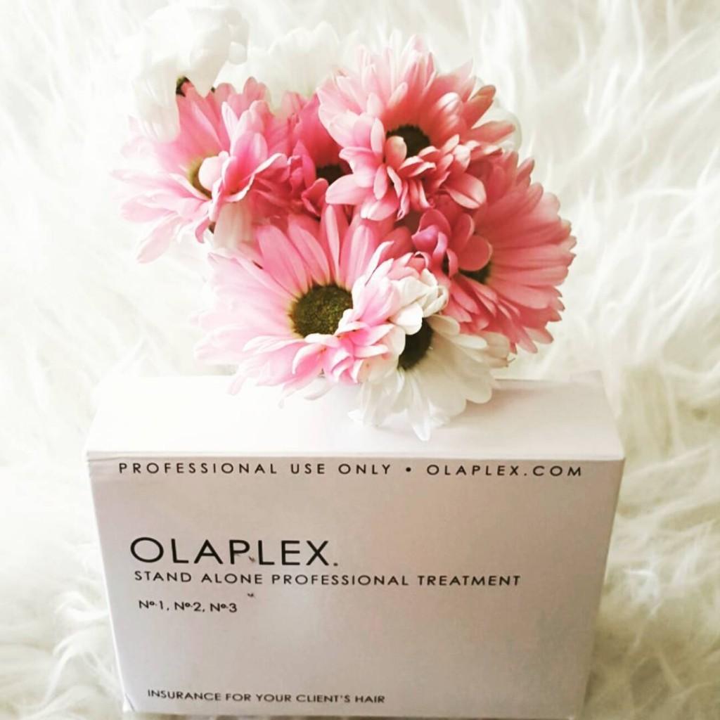 Olaplex / Bronde