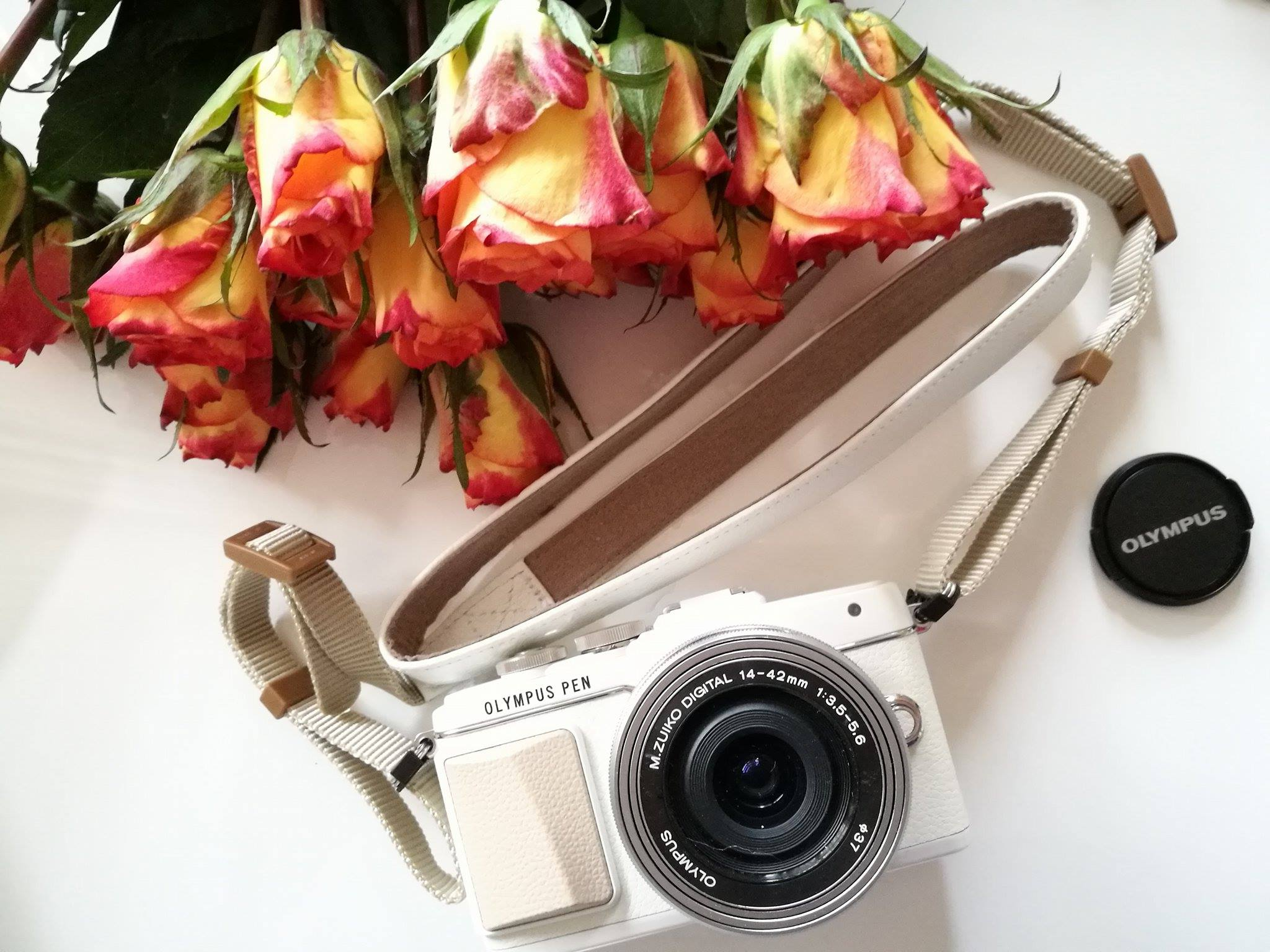 Rosen für die Olympus PEN E-PL7