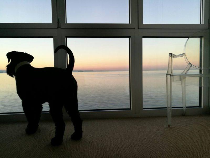 Chuck und das Meer